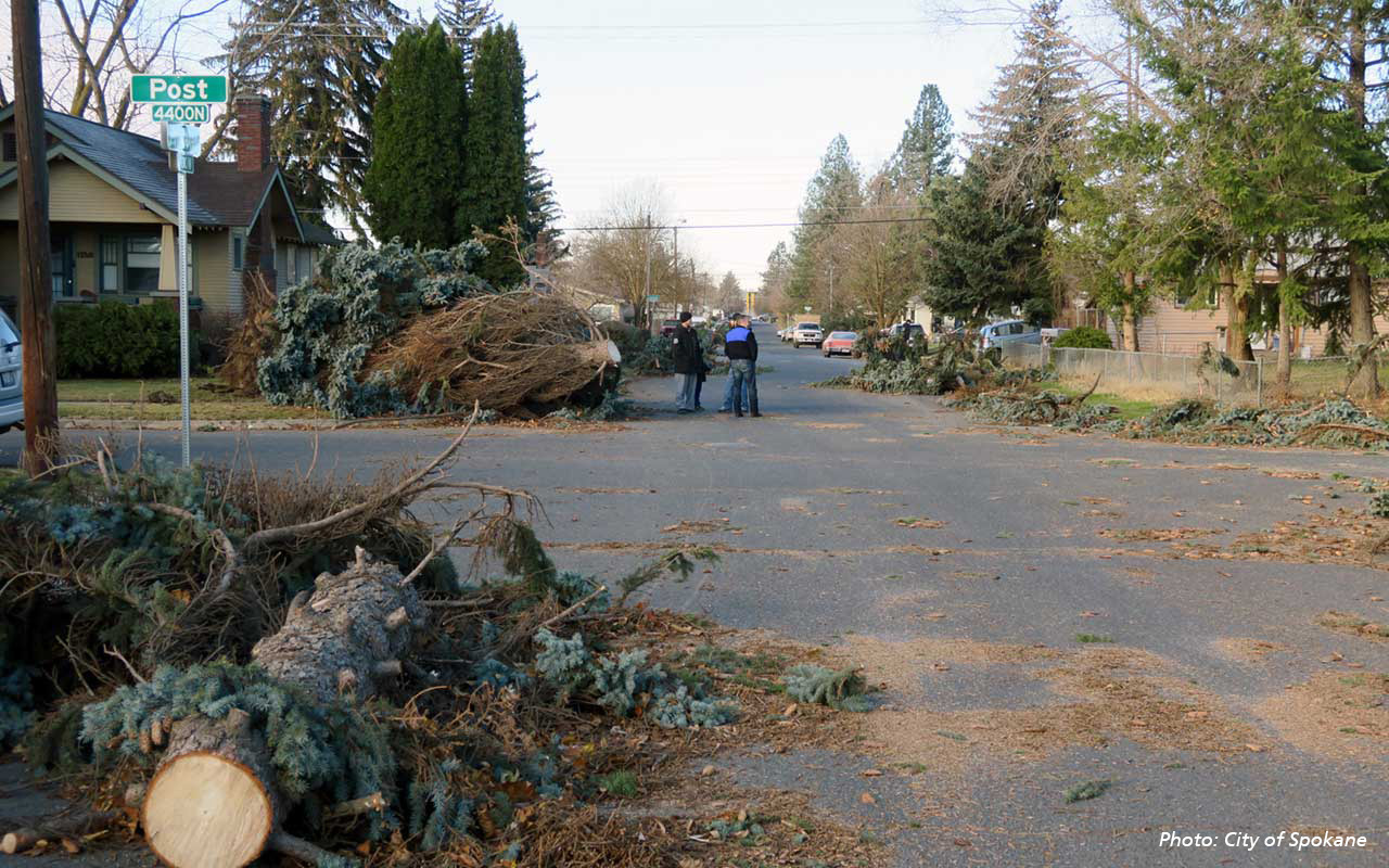Photograph of a residential street strewn with downed trees and branches.