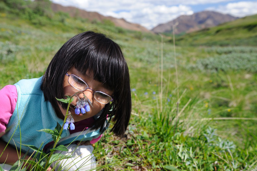 Photograph of a child smelling a wildflower.